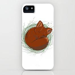 Little Fox - Cute Animals iPhone Case