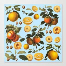 blue fruits Canvas Print