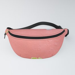 Travel photography print - pink wall and green plant - botanical print Fanny Pack