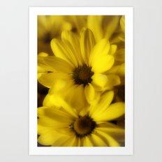 Sunshine Petals Art Print