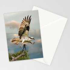 Osprey with nesting material Stationery Cards