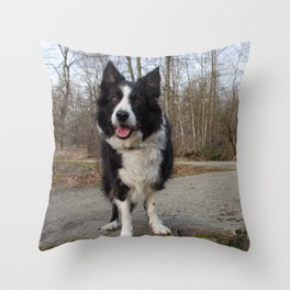 Border Collie Loving Life  Throw Pillow