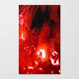 Macroscopic part 3 Canvas Print