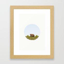 Common Wombat (Vombatus ursinus) Framed Art Print