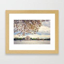 Jefferson Memorial and Cherry Blossoms Framed Art Print