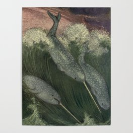 Vintage Narwhal Painting (1909) Poster