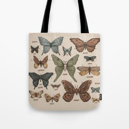 Butterflies and Moth Specimens Tote Bag