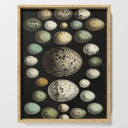Naturalist Eggs Serving Tray