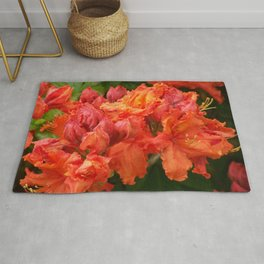 Beautiful red ones Rug