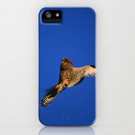 FLIGHT OF THE KESTREL iPhone Case