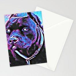 Pit Bull Models: Khan 02-03 Stationery Cards