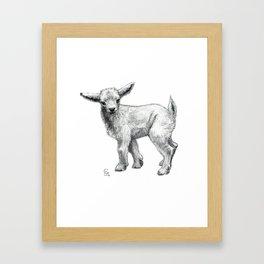 Little Goat Baby  SK134 Framed Art Print