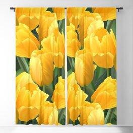 Yellow Tulips Field Blackout Curtain