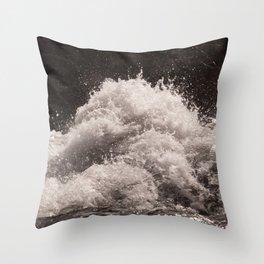 Splash in Sepia Tone Throw Pillow
