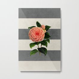 botanical stripes - camellia Metal Print