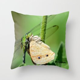 Dragonfly eating butterfly. Throw Pillow