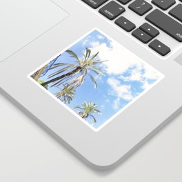 317. Summer Palm Tree, Tel Aviv, Israel Sticker