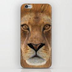Male Lion iPhone & iPod Skin
