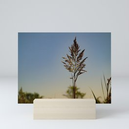 Marsh Grass Mini Art Print