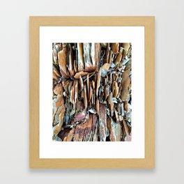 Cutler Coast Framed Art Print