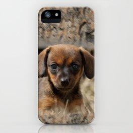 Bridgit 6 iPhone Case