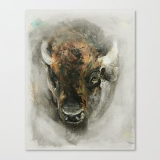 Plains Bison Canvas Print