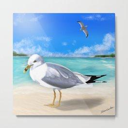 Bright Seagull Metal Print