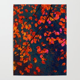 furious red leaves Poster