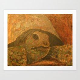 Gopher turtle endangered Art Print