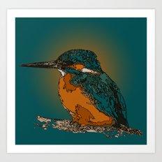 Little bluebird Art Print