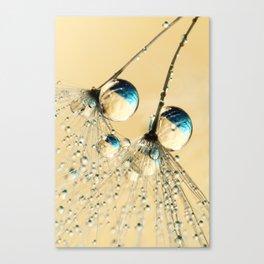 Duo Shower Dandy Drops Canvas Print
