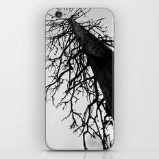Dead of Winter iPhone & iPod Skin