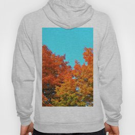 Autumn's Glory Hoody