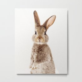 Brown Standing Bunny, Baby Animals Art Print By Synplus Metal Print