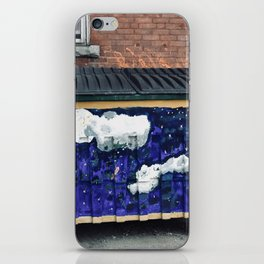 Dumpster Art iPhone Skin