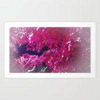 pink Japanese Garden Art Print