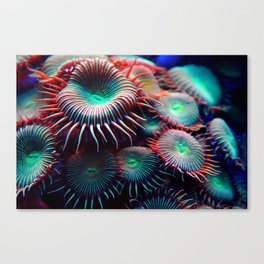 Anemonsters Canvas Print