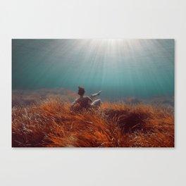 160814-8028 Canvas Print