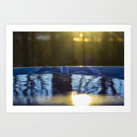 rileigh smirl Art Prints featuring Reflection by Rileigh Smirl