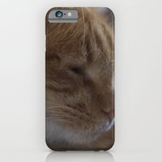 Nap Time iPhone 6s Slim Case