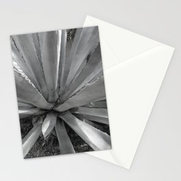 Agave Cactus, warm day, Stationery Cards