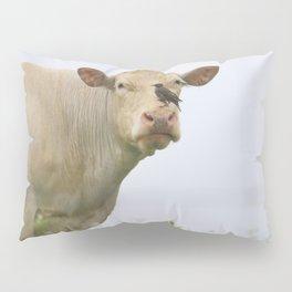 Cow Bird Pillow Sham