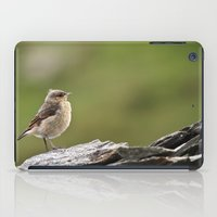 sparrow iPad Cases featuring Sparrow by Distilled Designs