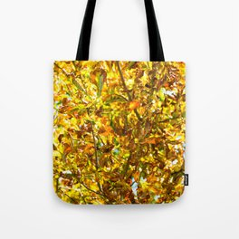 Autumn leaves pattern Tote Bag