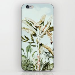 Landscape of banana trees in the jungle iPhone Skin