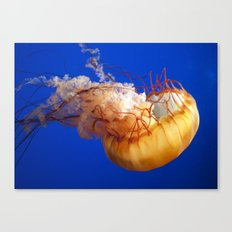 just another day being orange Canvas Print