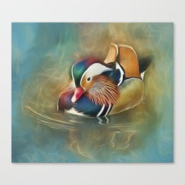 Mandarin Duck Canvas Print