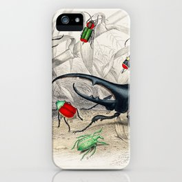 Hercules Beetle, Scarabaeus Tityus, Striped Click Beetle, Splendid Ground Beetle, BeautifulBeautiful iPhone Case