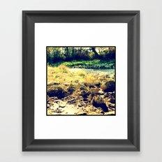 Nature 6 Framed Art Print