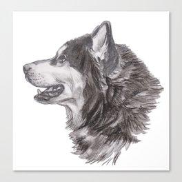 Gotta draw the Husky Doggie Canvas Print